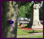 Paint Plainville Purple - Photo # (97)
