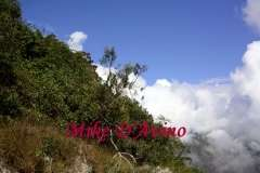 Peru's Machu Picchu and the Andes Mountains # (34)