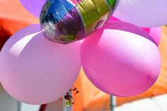 Greater Waterbury Relay for Life - Photo # 1550