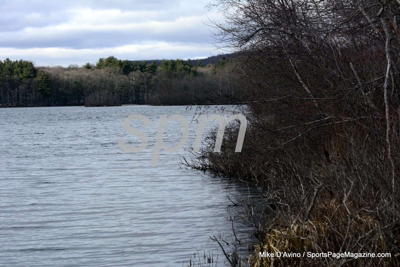 Scoville Resevoir Nature Walkway (80)