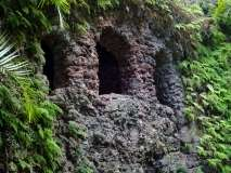Gallery Non-Sports; the Azores, Gardens of Antonio Borge and the Palace of Sant' Ana (29)