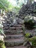 Gallery Non-Sports; the Azores, Gardens of Antonio Borge and the Palace of Sant' Ana (38)