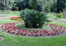 Gallery Non-Sports; the Azores, Gardens of Antonio Borge and the Palace of Sant' Ana (83)