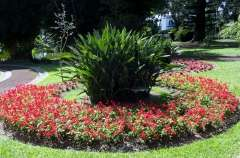 Gallery Non-Sports; the Azores, Gardens of Antonio Borge and the Palace of Sant' Ana (89)