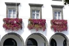 Gallery Non-Sports the Azores, Ponta Delgado, Part 1, (63)