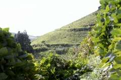 The Azores, Sete Cidades, Photo # (11)