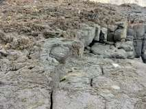 Termas da Ferraria and Volcanic Cliffs (12)
