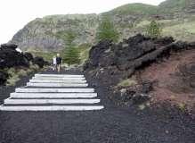 Termas da Ferraria and Volcanic Cliffs (4)