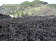 Termas da Ferraria and Volcanic Cliffs (43)