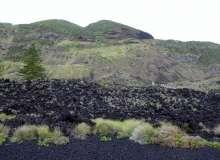Termas da Ferraria and Volcanic Cliffs (6)