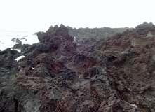 Termas da Ferraria and Volcanic Cliffs (61)