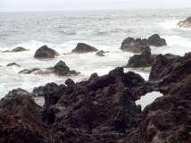 Termas da Ferraria and Volcanic Cliffs (64)