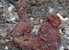 Termas da Ferraria and Volcanic Cliffs (65)