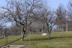 Walnut Hill Park 019