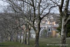 Walnut Hill Park 080