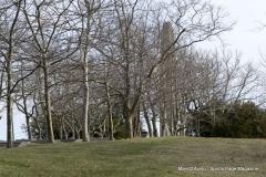 Walnut Hill Park 097