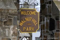 Walnut Hill Park 144