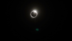 Gallery Non-Sports: Great American Eclipse: Wild Sun Winery, Hillsboro MO, August 21, 2017