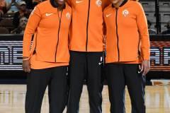WNBA-Connecticut-Sun-100-vs.-Chicago-Sky-94-8