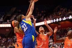 WNBA-Connecticut-Sun-102-vs.-Dallas-Wings-72-22