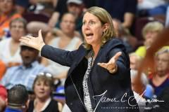 WNBA - Connecticut Sun 71 vs. Minnesota Lynx 74 (70)