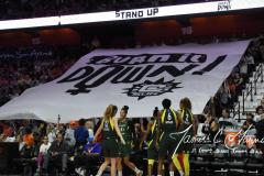WNBA - Connecticut Sun 81 vs. Seattle Storm 67 (29)