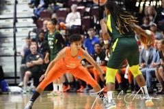 WNBA - Connecticut Sun 81 vs. Seattle Storm 67 (77)