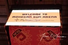 WNBA-Connecticut-Sun-89-vs.-Las-Vegas-Aces-85-1