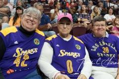 WNBA - Connecticut Sun 89 vs. Los Angeles Sparks 86 (8)