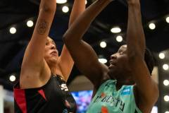 WNBA - New York Liberty 58 vs. Las Vegas Aces 90 (13)