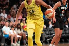 WNBA-New-York-Liberty-69-vs.-Seattle-Storm-84-53