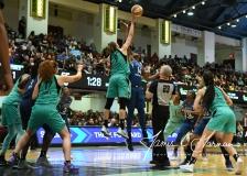 WNBA - New York Liberty 72 vs. Minnesota Lynx 78 (40)