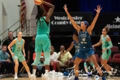 WNBA-New-York-Liberty-73-vs.-Minnesota-Lynx-89-83