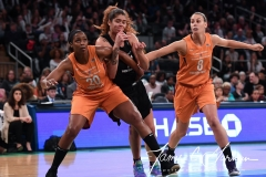 WNBA New York Liberty 74 vs. Phoenix Mercury 80 (16)