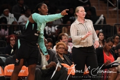 WNBA New York Liberty 74 vs. Phoenix Mercury 80 (26)