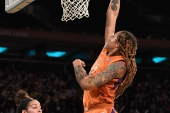 WNBA New York Liberty 74 vs. Phoenix Mercury 80 (45)