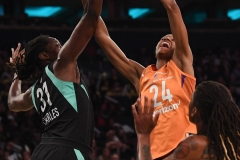WNBA New York Liberty 74 vs. Phoenix Mercury 80 (50)