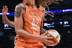 WNBA New York Liberty 74 vs. Phoenix Mercury 80 (54)