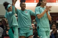 WNBA - New York Liberty 75 vs. Minnesota Lynx 69 (28)