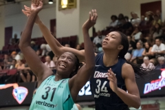 WNBA - New York Liberty 77 vs. Atlanta Dream 86 (16)