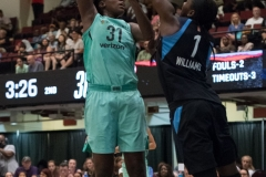 WNBA - New York Liberty 77 vs. Atlanta Dream 86 (36)