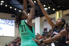 WNBA - New York Liberty 77 vs. Atlanta Dream 86 (4)