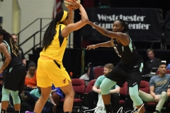 WNBA - New York Liberty 78 vs. Indiana Fever 75 (11)
