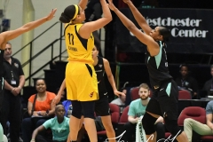 WNBA - New York Liberty 78 vs. Indiana Fever 75 (12)