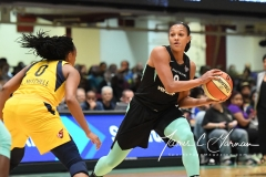 WNBA - New York Liberty 78 vs. Indiana Fever 75 (13)
