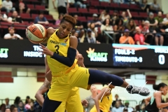WNBA - New York Liberty 78 vs. Indiana Fever 75 (14)
