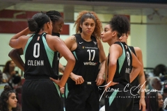 WNBA - New York Liberty 78 vs. Indiana Fever 75 (18)