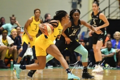 WNBA - New York Liberty 78 vs. Indiana Fever 75 (21)