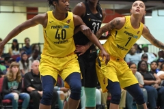 WNBA - New York Liberty 78 vs. Indiana Fever 75 (33)