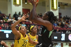 WNBA - New York Liberty 78 vs. Indiana Fever 75 (34)